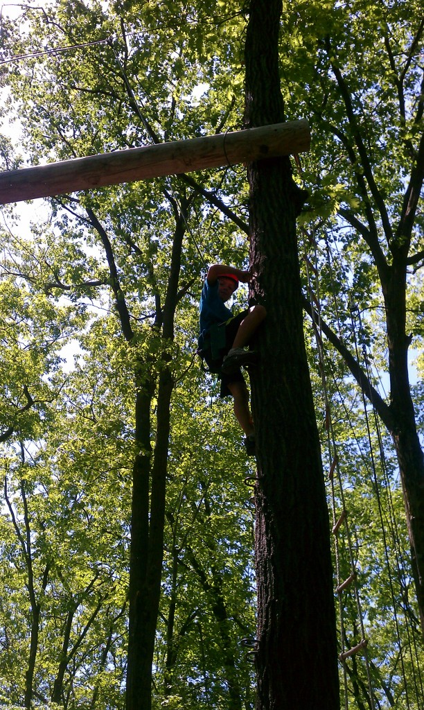 Scaling a tree at TOEC 05.20.12