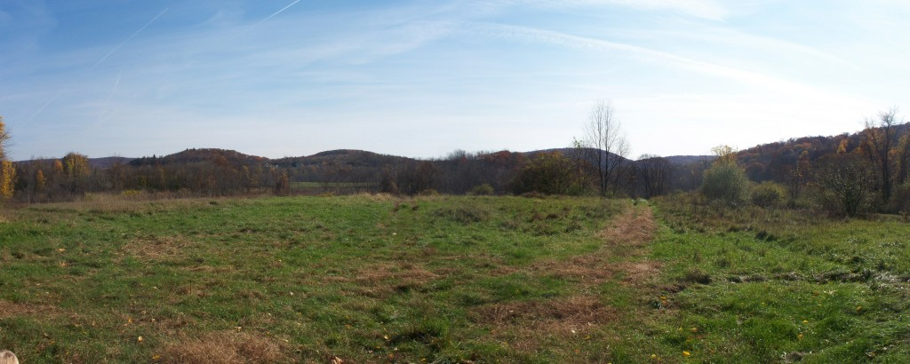 The panoramic view from Patriot Park Conservation Area.